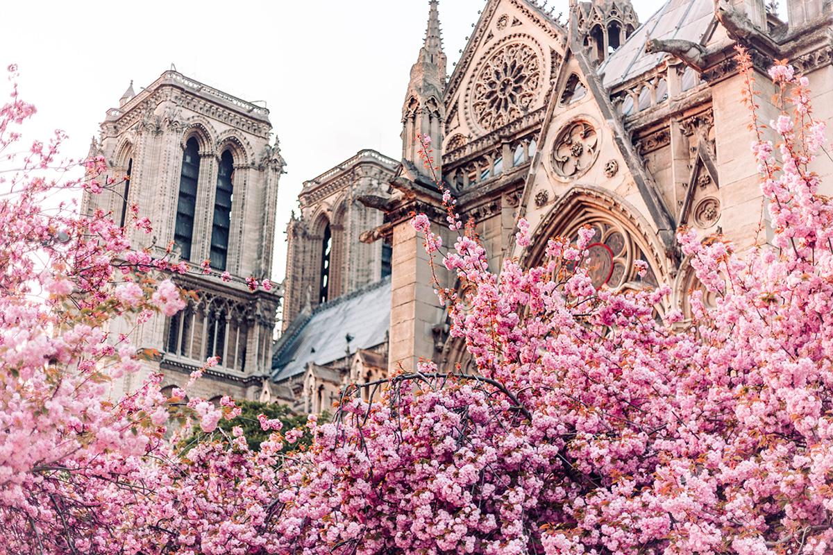 【一分钱攻略】令人期待的巴黎春天,来了吗?