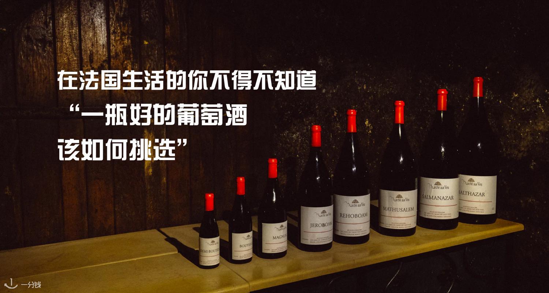 法国葡萄酒   节日季实用指南,手把手教会你如何挑选合适的葡萄酒