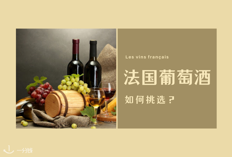 法国葡萄酒科普 | 摇晃的酒杯,那不寻常的美!如何挑选一款适合自己的葡萄酒?科普帖呈上!