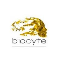 【黑五独家】小仙女快冲!容易断货、黑五必抢的Biocyte 美白丸、抗糖丸、胶原蛋白全场85折!轻松get少女肌!
